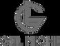 Logo Gel Niche.png