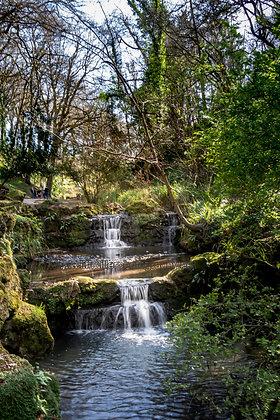Springtime in Peasholm Glen.