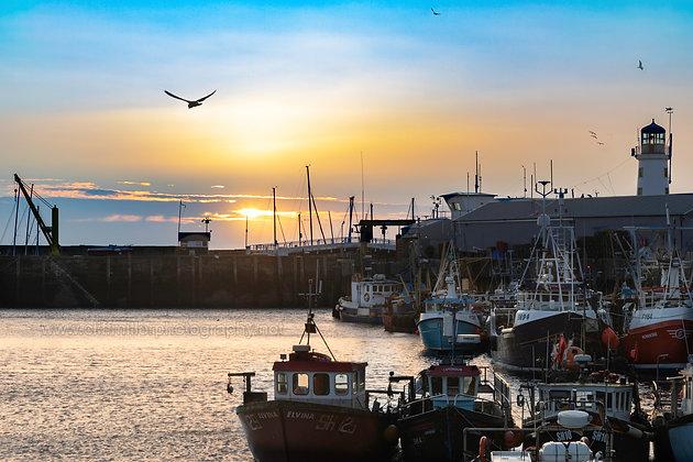 Scarborough harbour at sunrise.
