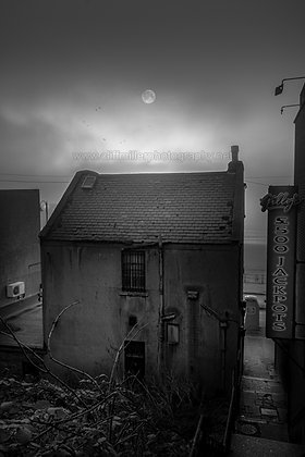 Moonlight & Decay.