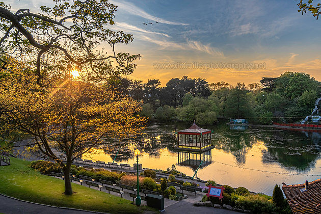 Golden Light in Peasholm Park.