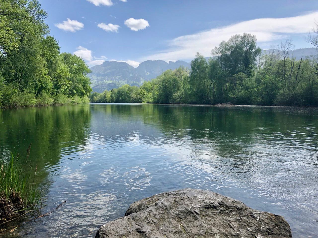 Naturschutzgebiet Altach?