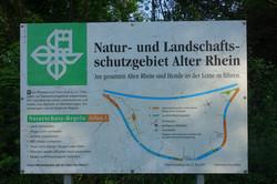 Naturschutzgebiet Diepoldsau