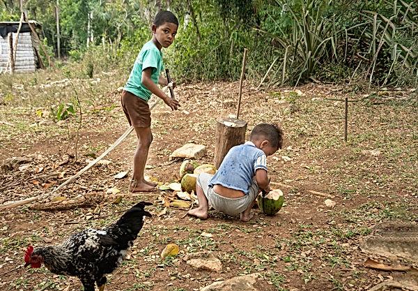 Famille des bois-las terrazas-Cuba-31.jp