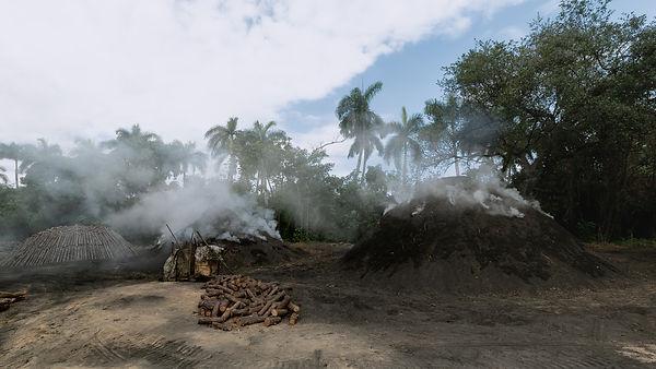 Histoire du charbon de bois-vallée de vi