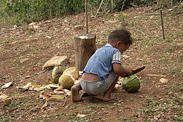 Famille des bois-las terrazas-Cuba-25.jp