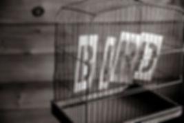 SL5 - Parol Board Delay Claims