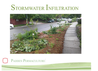 Stormwater Infiltration.png