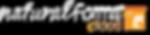 nF Cloud Logo.png