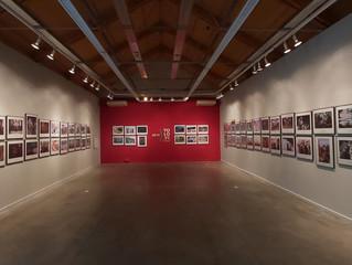 Abrimos nuestra exposición YoLoVi 2019