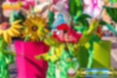 Carnaval_Gilles_BF_160219_161 copie.jpg