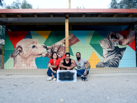 Artists paint mural to promote animal welfare - by PortugalResident