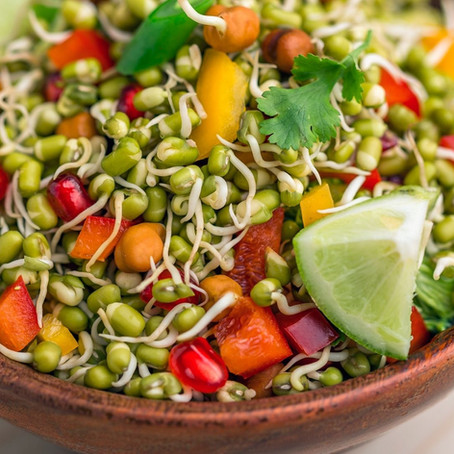 Health Benefits of Sprouts for elderly
