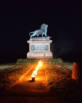 Lion + flammes.JPG
