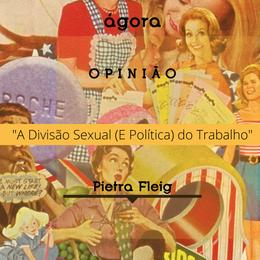 Divisão Sexual (e Política) do Trabalho