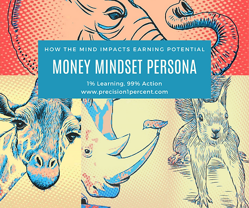 Money Mindset persona (2).png