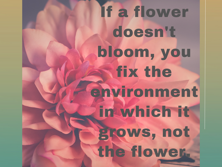 How to have a blooming great life! -understanding culture, climate and leadership.