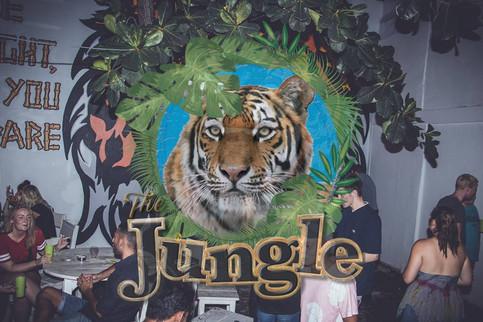 jungle b.jpg