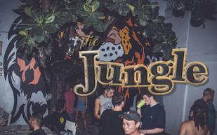 the jungle.jpg