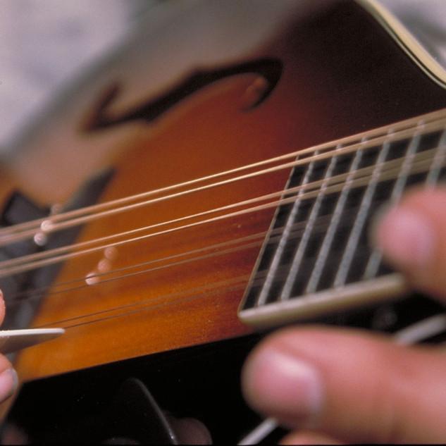 mandolin-1-1458834.jpg