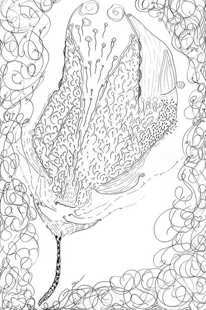 Superorganism #123
