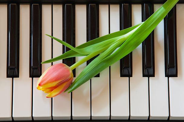 Music And Flowers.jpg.jpg