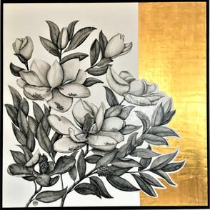 Marvellous Magnolias