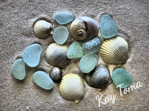 Simply Glass And Shells 407