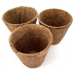 coir-biodegradable-pot.jpg