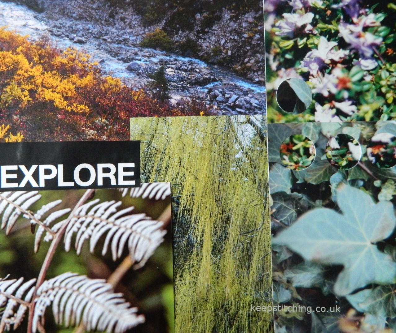 Colour inspiration from nature.
