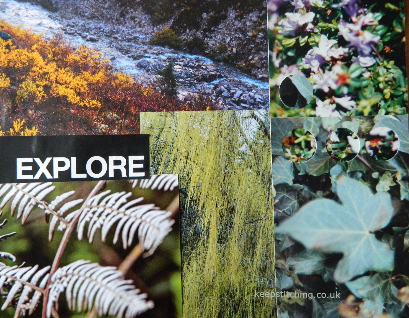 Colour inspiration from nature www.keeps
