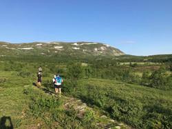 First climb to Grønsenknippa