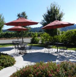 winery-umbrellas