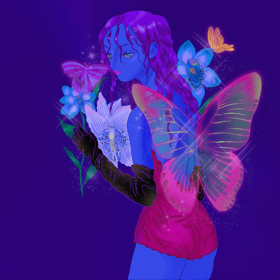 butterfly_lowres.jpg