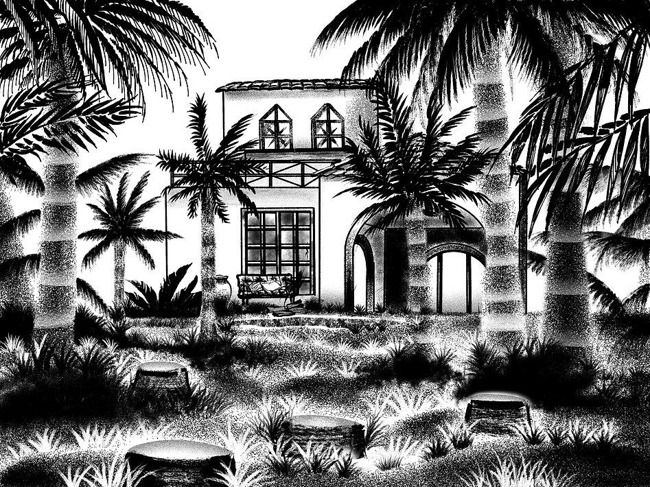 palmtreeforest.jpg