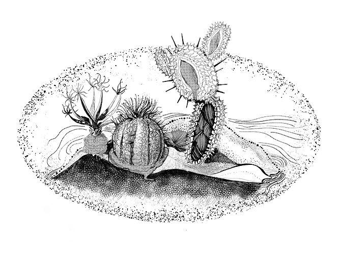 durianprint2.jpg