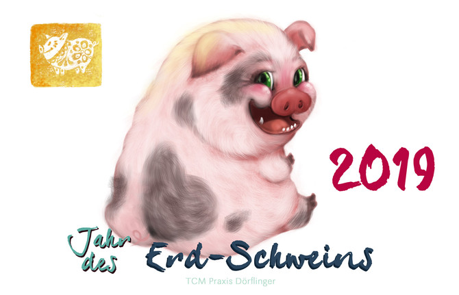 Chinese New Year, the Year of the Earth Pig