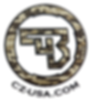 CZ_USA logo