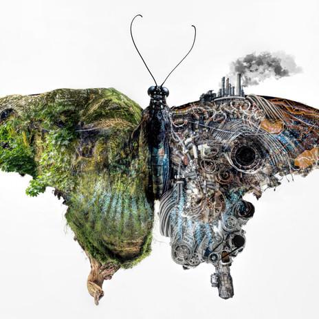 mothduality1.jpg