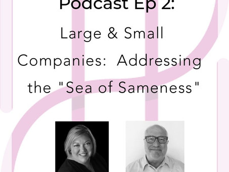 "How Large & Small companies can address the ""Sea of Sameness"" in Employer Branding"