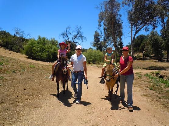 pony ride, petting zoo, birthday