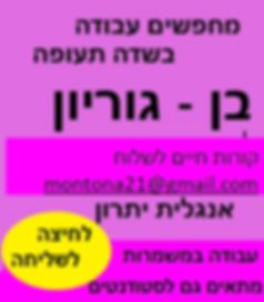 3.jpg.png