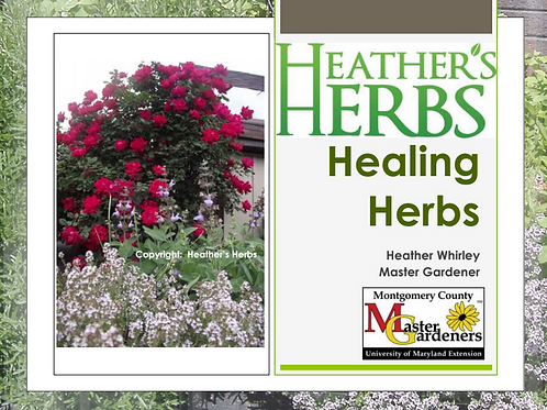 Healing Herbs 2016 MG Conference