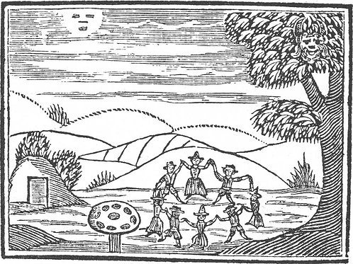 Fians, Fairies and Picts - D MacGregor