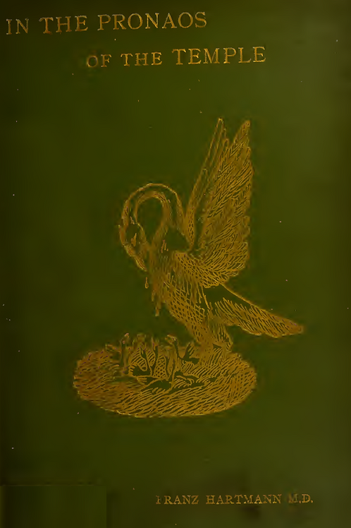 In the Pronaos of the Temple of Wisdom - F Hartmann 1890