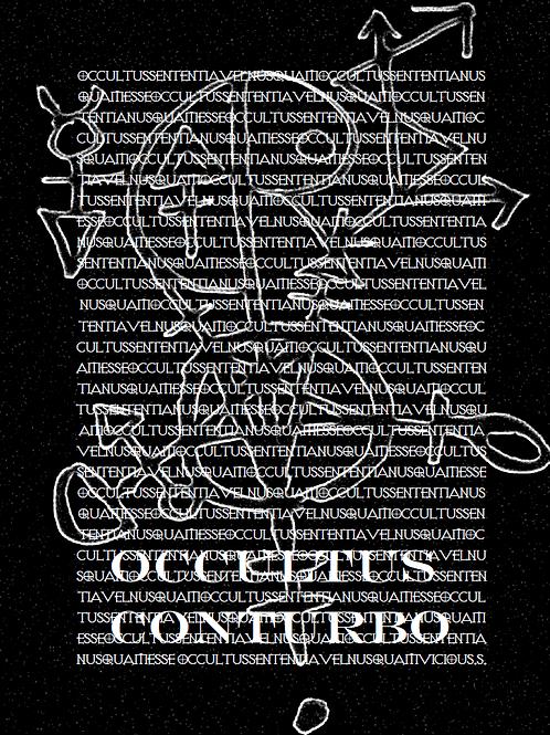 Occultus Conturbo - The Book Of Radicals- Frater Vicious Sheosyrath