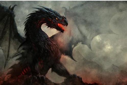 Mystical Dragons 5 Books