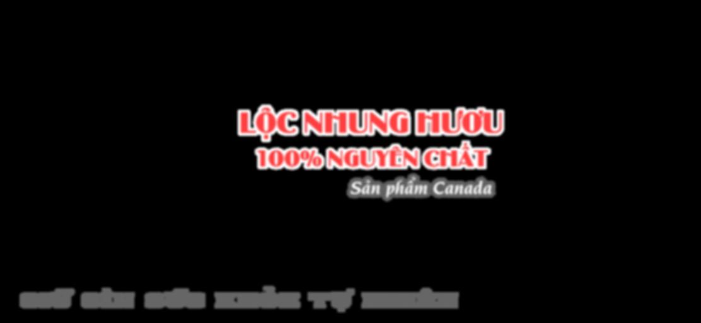 slide-01-text-vn.png