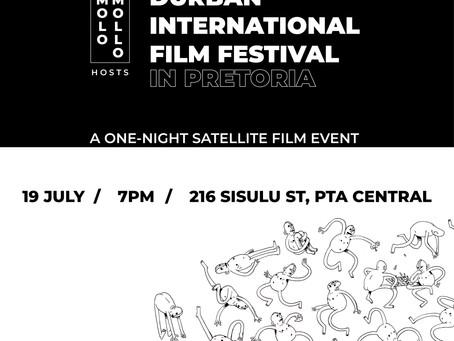 Molo Mollo x Durban International Film Festival