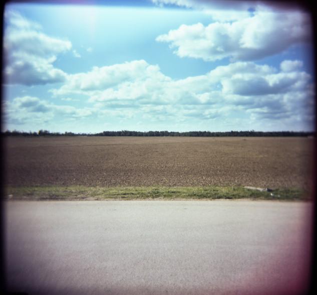 Farmland Series #5